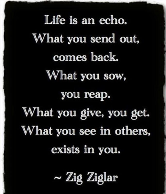 ziglar life quotes