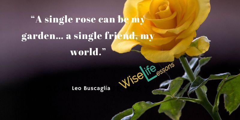 """A single rose can be my garden… a single friend, my world."""