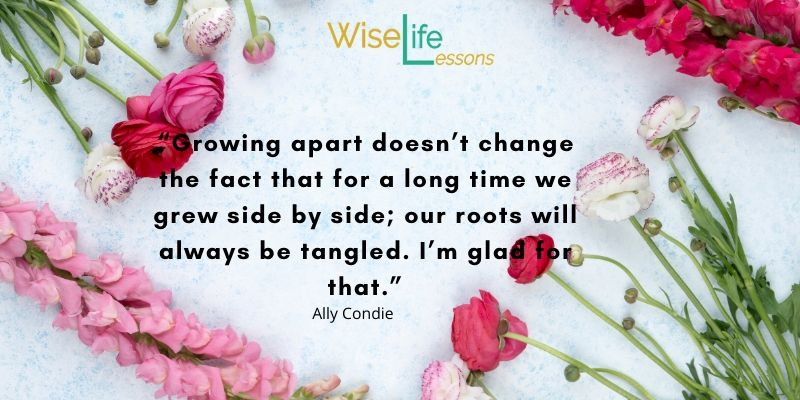 """""""Growing apart doesn't change the fact that for a long time we grew side by side; our roots will always be tangled. I'm glad for that."""""""