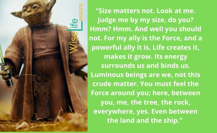 """""""Size matters not. Look at me. Judge me by my size, do you_ Hmm_ Hmm."""