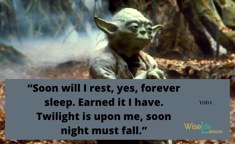 """""""Soon will I rest, yes, forever sleep. Earned it I have. Twilight is upon me, soon night must fall."""""""