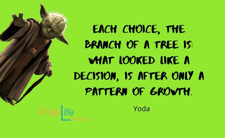 Each choice, the branch of a tree is_ what looked like a decision, is after only a pattern of growth.