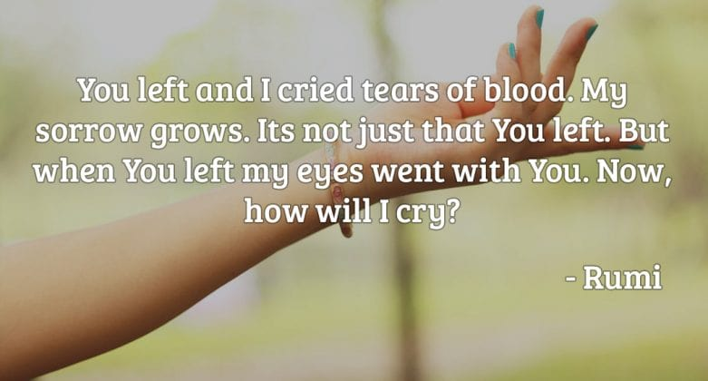 You left and I cried tears of blood. My sorrow grows. It's not just that you left. But when you left my eyes went with you. Now, how will I cry
