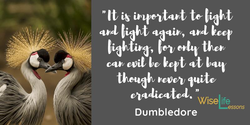 Albus Dumbledore Quotes.