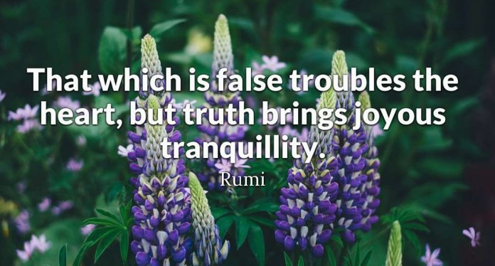 That which is false troubles the heart, but truth brings joyous tranquility