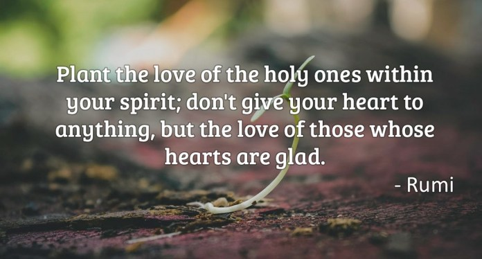 Plant the love of the holy ones within your spirit; don't give your heart to anything, but the love of those whose hearts are glad