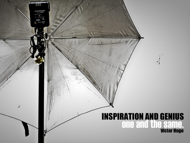Inspiration and Genius - One and the same