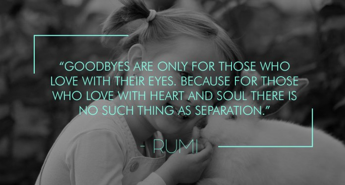 Goodbyes are only for those who love with their eyes. Because for those who love with heart and soul there is no such thing as separation